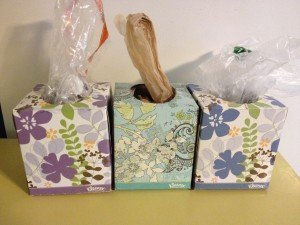 Tissue Box Grocery Bag Storage