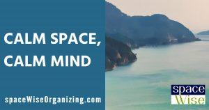 spaceWise Organizing Austin Texas Organizer